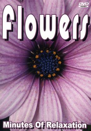 Various Artists - Flowers - Minutes of Relaxation