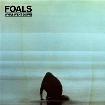 Foals - What Went Down (Special Edition, 2 LPs)