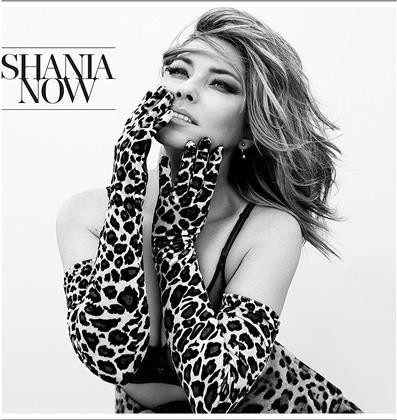 Shania Twain - Now (LP)
