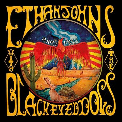 Ethan Johns & The Black Eyed Dogs - Anamnesis (2 LPs)