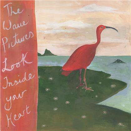 The Wave Pictures - Look Inside Your Heart (LP)