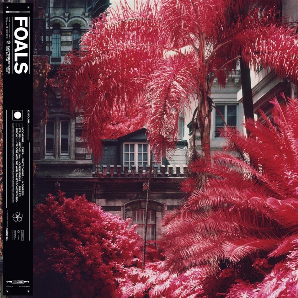 Foals - Everything Not Saved Will Be Lost Part 1 (LP)