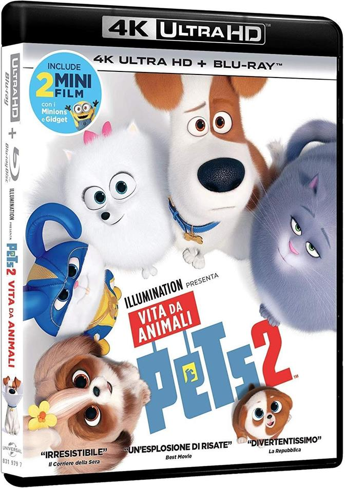 Pets 2 - Vita da animali (2019) (4K Ultra HD + Blu-ray)